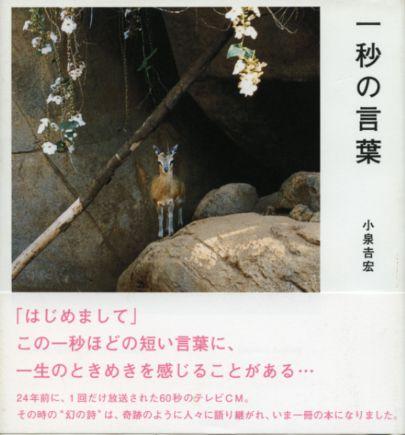 Koizumi001_2