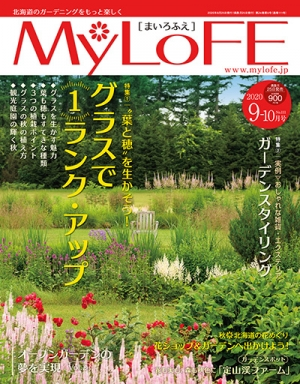 Mlf_cover_20200827111701