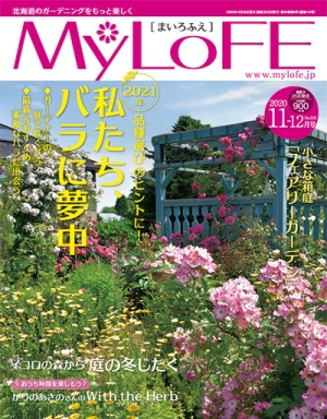 Mlf_cover_20201026110101